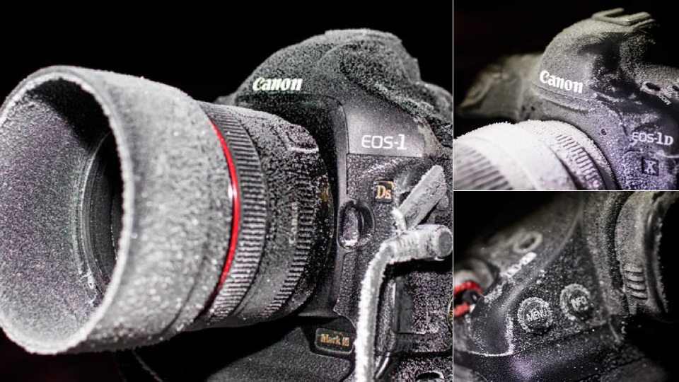 what does dslr mean