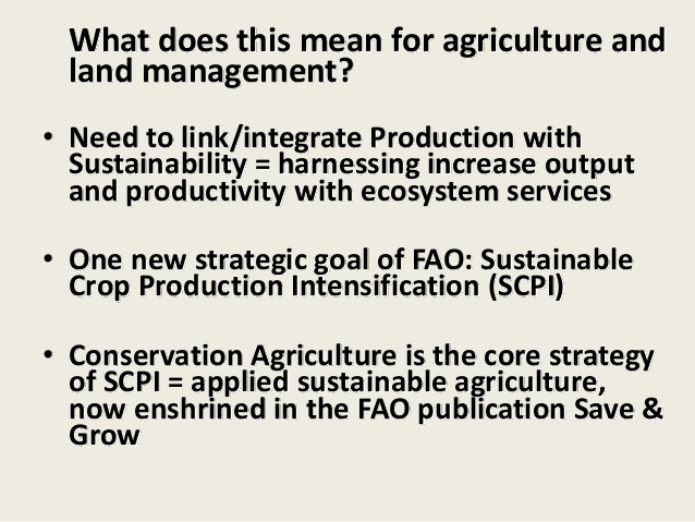 what does fao mean