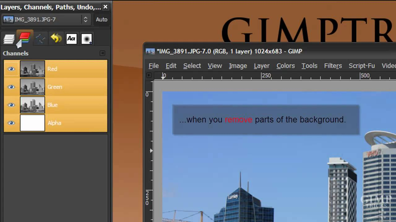 what does gimp mean